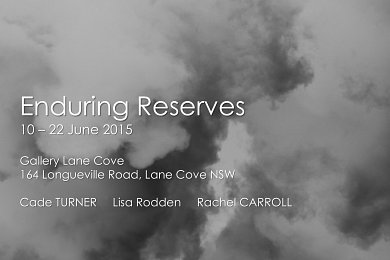 cadeturnerenduringreservesartexhibitionjune2015gallerylanecoveimage2